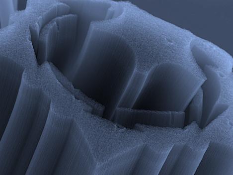 Nanotube starburst