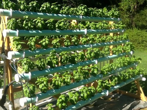 Small-scale hydroponic gardening. Image via Good Home Design.